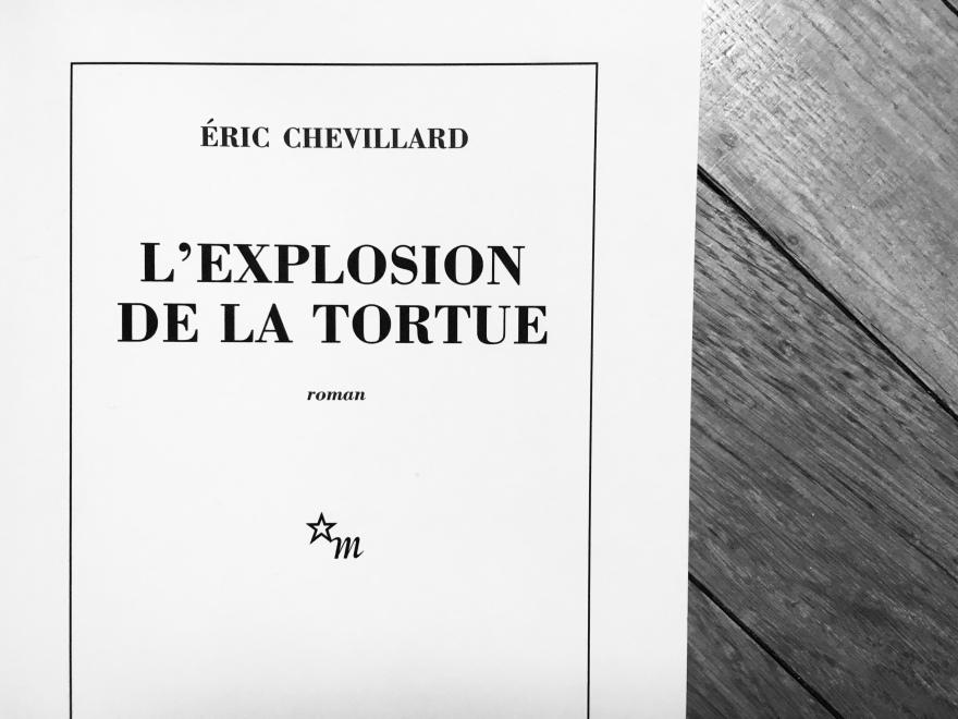 L'explosion de la tortue, E. Chevillard
